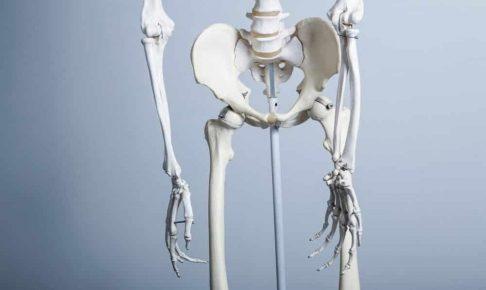 骨盤が歪んでいるのは当たり前!?大切なのは思い切り緩んで、縮むこと